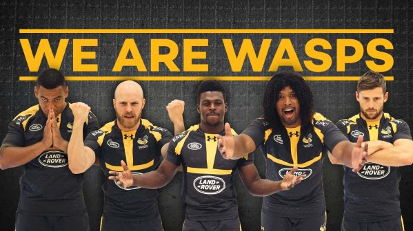 Ashley Johnson Wasps