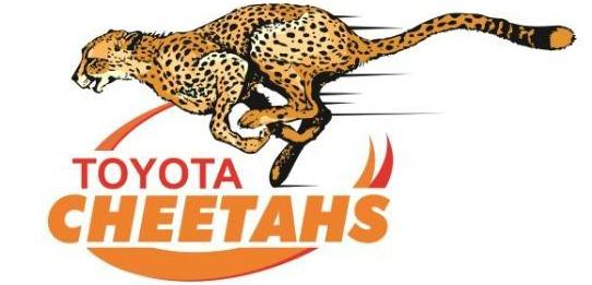 Cheetahs Club Crest 2016